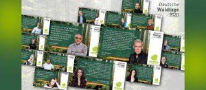 Waldtag 2020/ Copyright BMEL