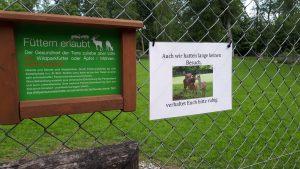 wildpark_2021_wiedereroeffnung/ Foto- Archiv Niveau-Klatsch